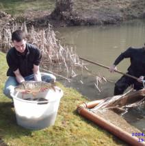 Golden Pond Fishery