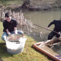 Golden Pond Fishery